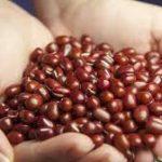 小豆水ダイエット口コミで体重減少です。